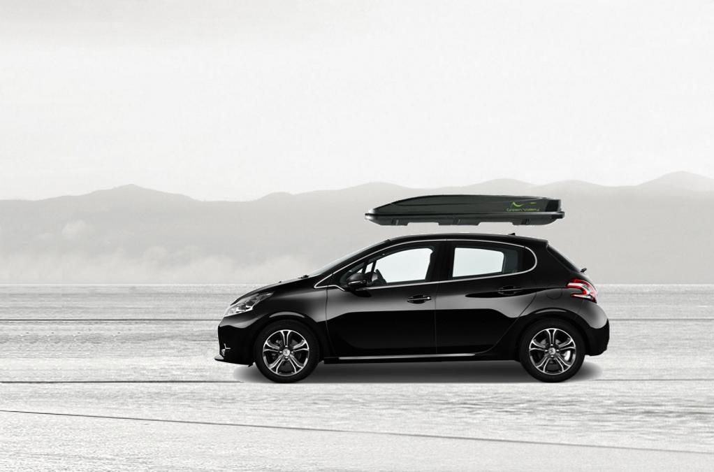 top quality sells affordable price Coffre de toit Peugeot 208